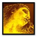 EVAH PIRAZZI GOLD