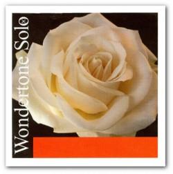 Struna skrzypcowa A Wondertone Solo 4/4
